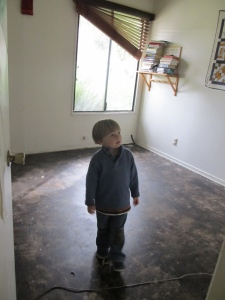 "Eli surveying ""his"" room (he sleeps with us but we store his toys and clothing here)."