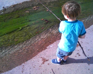 Fishing for algae in the canal at the park.