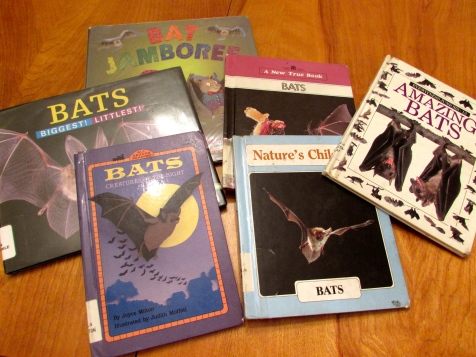 bat books from the library